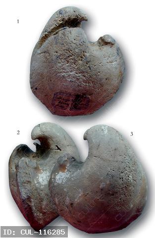 Triász Megalodon-félék   1-3: Gemmellarodus seccoi (PARONA). – Nagytermetű Megalodon-féle, amelynek bal teknője jóval magasabb és domborúbb, mint a jobb. A nemzetség neve GAETANO GIORGIO GEMMELLARO (1832-1904) kiváló olasz paleontológusnak állít emléket. A képen látható, id. LÓCZY LAJOS által Gyulafirátót mellett gyűjtött példány a G. seccoi seccoi alfajt képviseli, melyet többek között a kerekded körvonalú jobb teknője különböztet meg a rokon formáktól. A felső-nóri alemelet egyik vezérkövülete.  A Magyar Állami Földtani Intézet (MÁFI) múzeumának gyűjteményéből.
