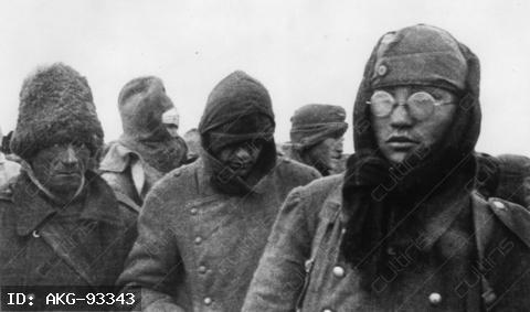 Second World War 1939-45: Eastern Front/ Surrender of the German troops in Stalingrad on 31 January 1943.-Romanian and German prisoners of war.-Photo.